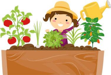 Illustration zeigt ein Mädchen beim Anpflanzen von Gemüse und Kräutern. Sie hält eine Gießkanne in der Hand.
