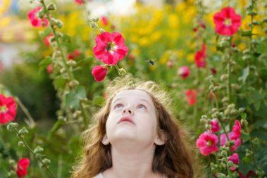 Ein kleines Mädchen steht in einem Blumenfeld und guckt zu einer Biene herauf.